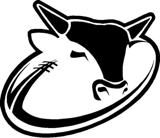 Bull-Rugby.jpg
